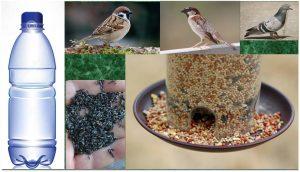 صورة اطعام الطيور والعصافير صدقة طريقة مرره حلوه وسهله وعندك في البيت unnamed file 491 300x172